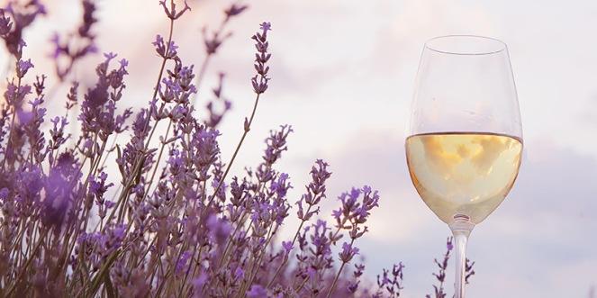 lavender-white-wine